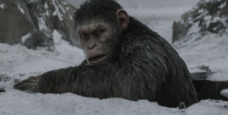 'War for the Planet of the Apes' Gives Greater Insight Into A World Shared by Apes and Humans